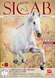 cartel salon internacional del caballo sicab